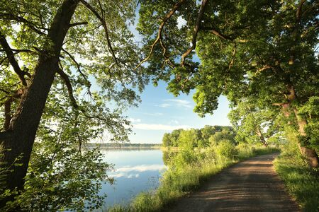 natural  moody: Country Road on the shore of the lake in spring morning