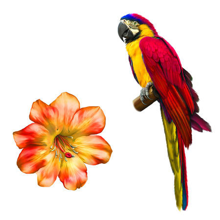 psittacidae: Colorful blue parrot macaw, Beautiful bright red Flower. Isolated on white. Illustration