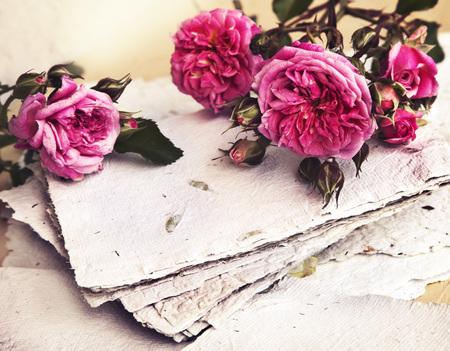 sfondo romantico: bellissimo sfondo romantico con rose rosa, petali e carta fatta a mano, morbido fiore di primavera sfondo  amore di fondo