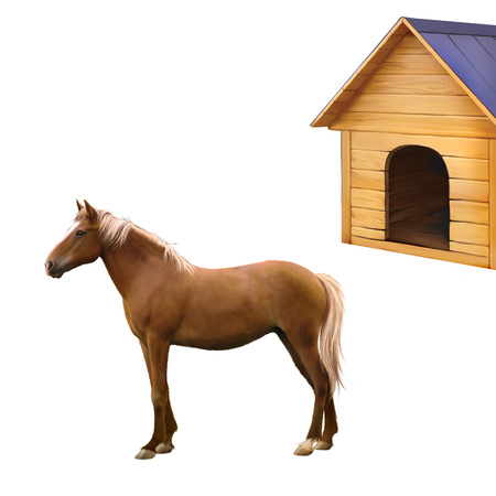 sorrel: Mixed breed horse standing, old wooden dog house, illustration isolated on white background Stock Photo