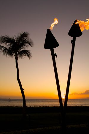 Tiki Torches and palm Tee in Sunset