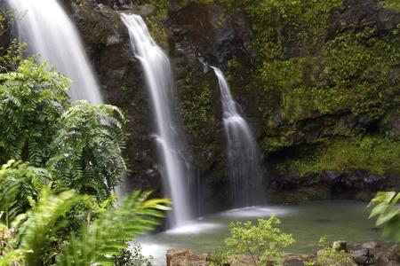 hawai: Cascada de Maui Foto de archivo