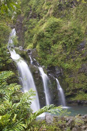 Maui Waterfalll photo
