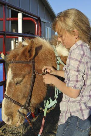 bridle: Girl Puts Bridle on Pony Stock Photo