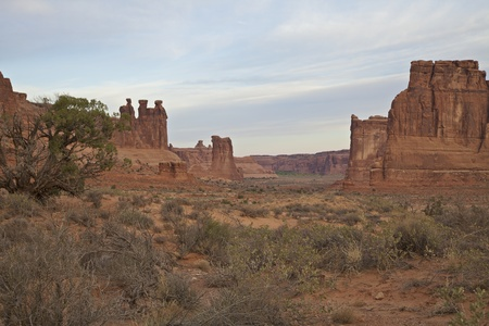 arches national park: Arches National Park Utah Landscape