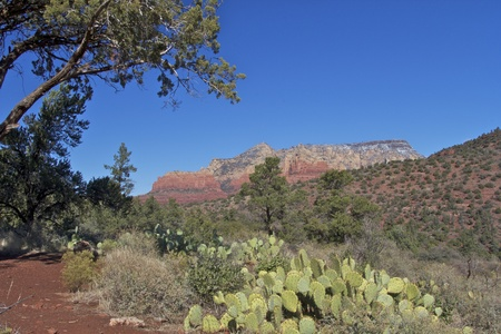 Arizona Red Rock Country Landscape photo