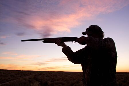 Bird Hunter Silhouetted at Sunrise photo