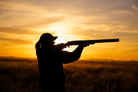 Bird Hunter en Sunset photo
