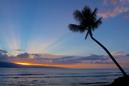 Island Sunset with God Beams photo