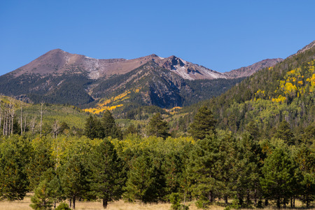 coconino national forest: San Francisco Peaks Flagstaff Arizona in Fall