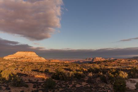 canyonlands: Canyonlands National Park Landscape