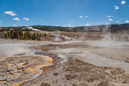 Geyser Basin Yellowstone N.P.