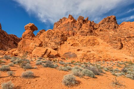 nevada: Valley of Fire Nevada Landscape