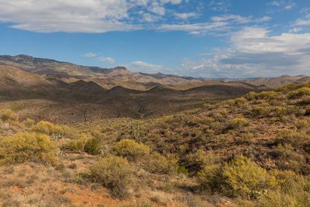 Arizona Desert  Landscape Banco de Imagens - 83078002
