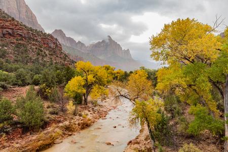 Zion National Park Fall Landscape