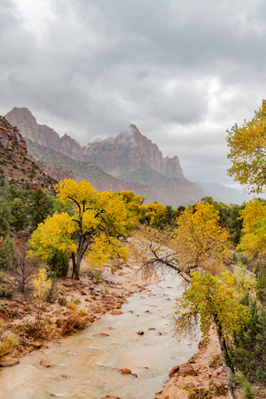 Zion National Park Fall Landscape