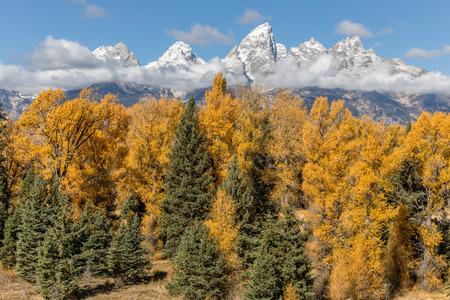 Teton Landscape in Autumn