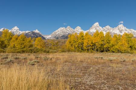 Autumn Landscape in the Tetons Stock Photo