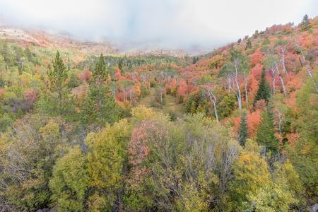 Snake River Canyon Idaho in Fall Фото со стока - 91781830