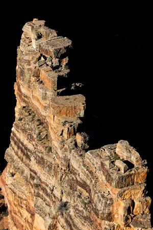 North Rim Grand Canyon Landscape
