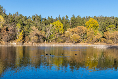 Lynx Lake Prescott Arizona Autumn Reflection Imagens