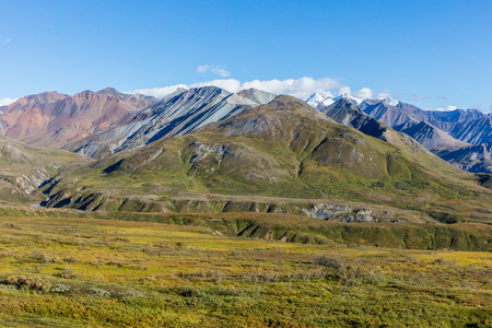 Scenic Denali National Park Landscape Stock Photo