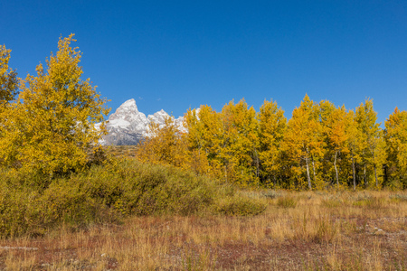 Autumn Landscape in the Tetons Stock Photo