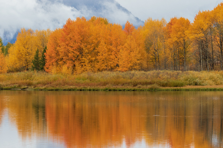 Teton Autumn Landscape Reflection