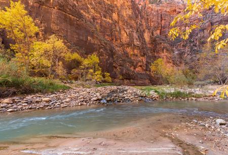 Zion National Park Autumn Landscape