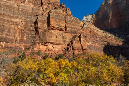 Scenic Zion National Park Autumn Landscape