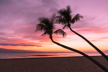 Tropical Maui Sunset