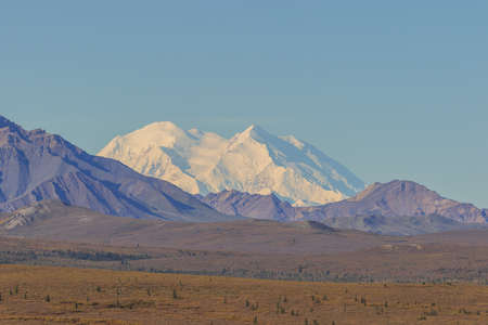 Scenic Denali National Park Landscape Фото со стока