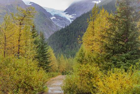 Scenic Kenai Peninsula Alaska in Autumn 免版税图像