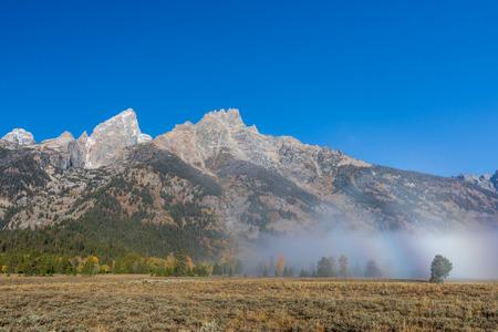 Scenic Teton Landscape in Autumn 免版税图像