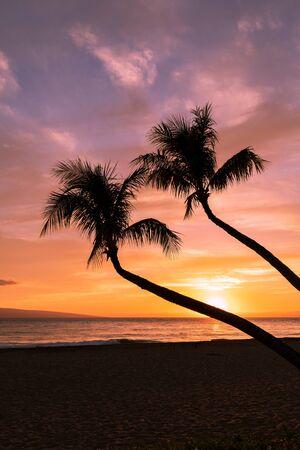 Beautiful Maui Beach Sunset 写真素材