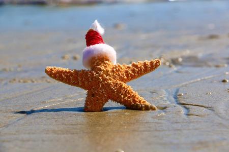 Holiday Starfish Stockfoto