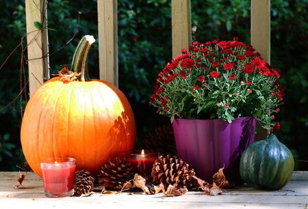 Autumn Holiday Decorations