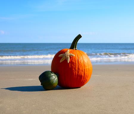 Pumpkin on a beach 版權商用圖片