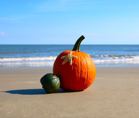 Pumpkin on a beach Archivio Fotografico