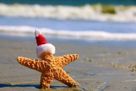 Kerstmanhoed op een zeester Stockfoto - 49007357