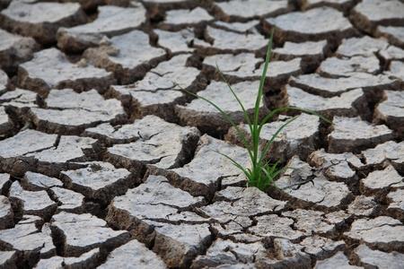 A globális felmelegedés Stock fotó