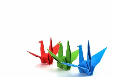 csoport papír madár