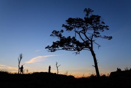 Silhouette landscape Stock Photo - 21431358