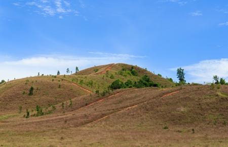 Grass mountain Stock Photo