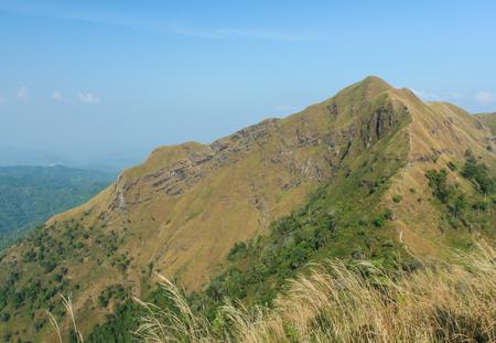 mountain in summer season Stock Photo