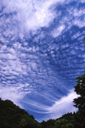 秋の空 写真素材 - 76387805