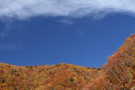 紅葉の山 写真素材 - 76387842