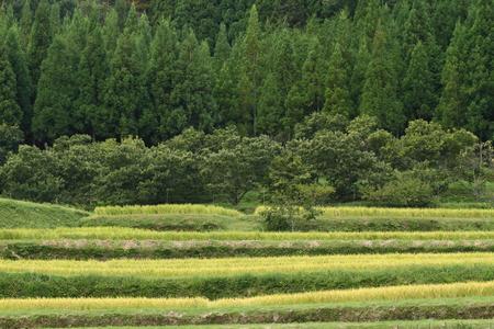 初期の秋山村 写真素材