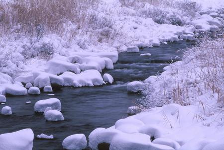 冬の河川敷 写真素材 - 76391549