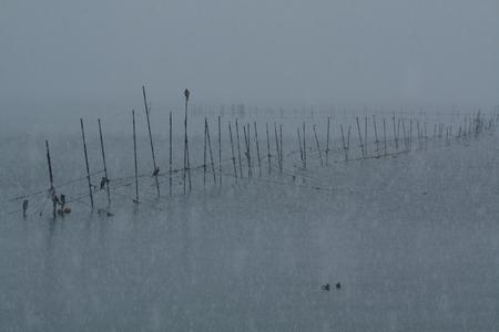 雪の琵琶湖 写真素材 - 76147639